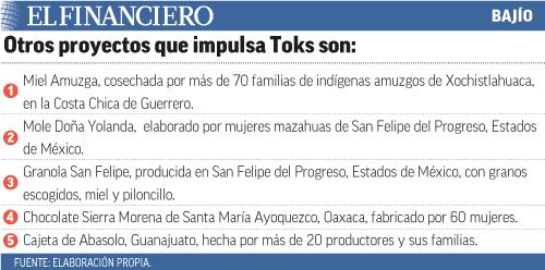 """Proyectos-Toks_B2451"""