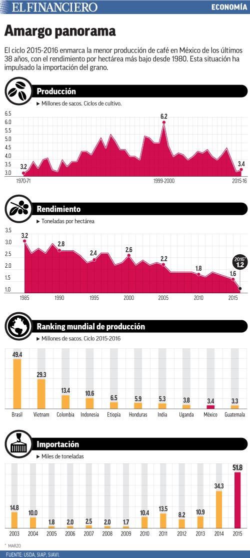 El ciclo 2015-2016 enmarca la menor producción de café en México de los últimos 38 años, con el rendimiento por hectárea más bajo desde 1980. Esta situación ha impulsado la importación del grano.